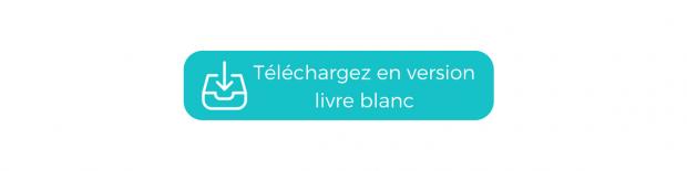 Livre Blanc Webmarketing E-commerce Noël